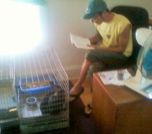 Uncle Joshua reading to the bunnies shortly after moving into the Anthill (2010).